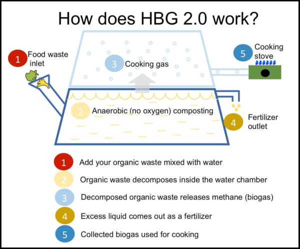 BIOTECH Savvy Promotes Sustainable Living Reducing Carbon Footprint with Compost Recycler