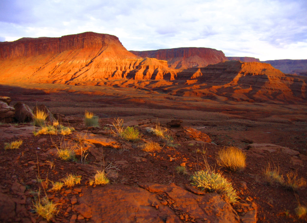 SUWA Files Lawsuit Challenging BLM'S Oil and Gas Leasing On The Doorstep Of Bears Ears, Canyons Of The Ancients, and Hovenweep National Monuments