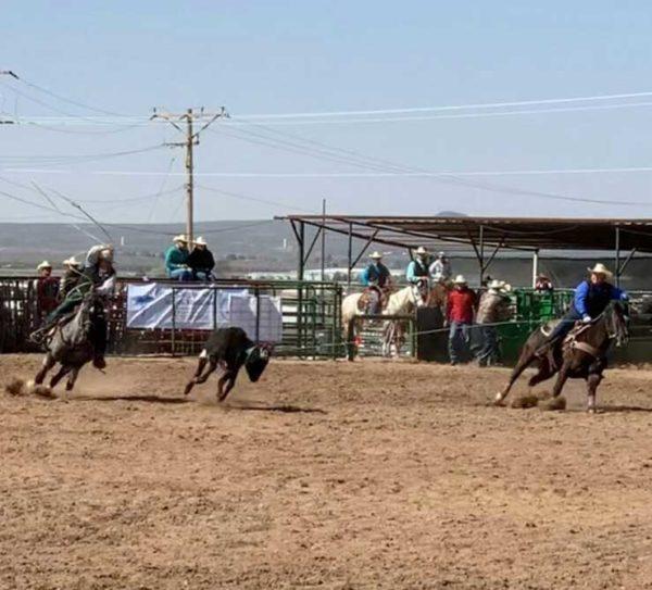 NTU's Men's Rodeo Team Finds Momentum in Spring Season