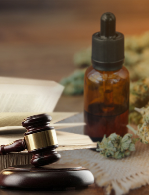 How to Research and Find a Good CBD Oil that You Can Trust?
