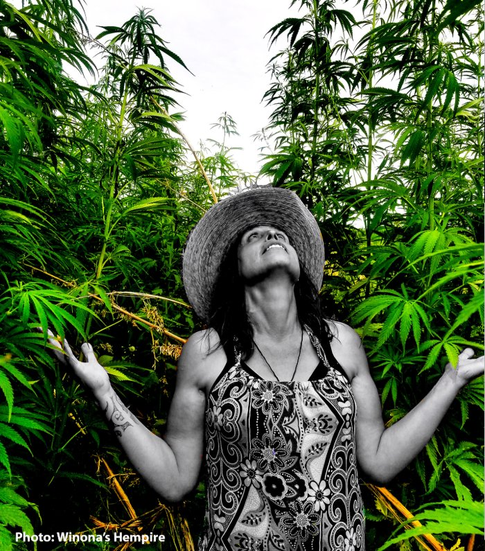 Environmental Activist Winona LaDuke Plans to Revitalize Hemp as an Emerging Enterprise to Create a Green Economy for the Next Generation of Native American Farmers