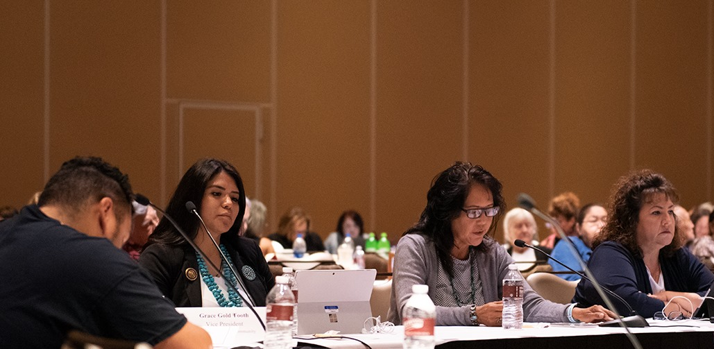 Navajo Nation Delegate Tso Delivers Violence Against Women Act Testimony