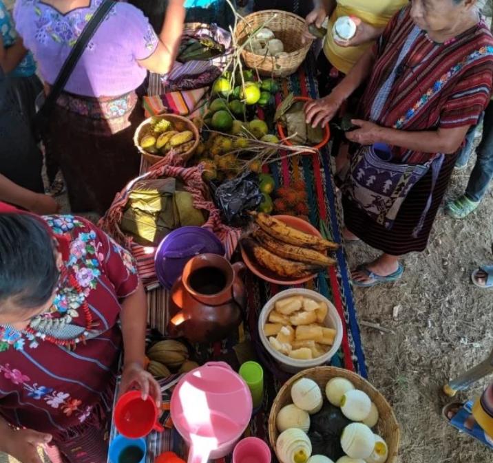 Sisters in Struggle: Indigenous Environmental Network LeadershipTrip to Guatemala