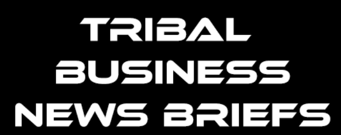 Tribal Business News Briefs:  March 9, 2020